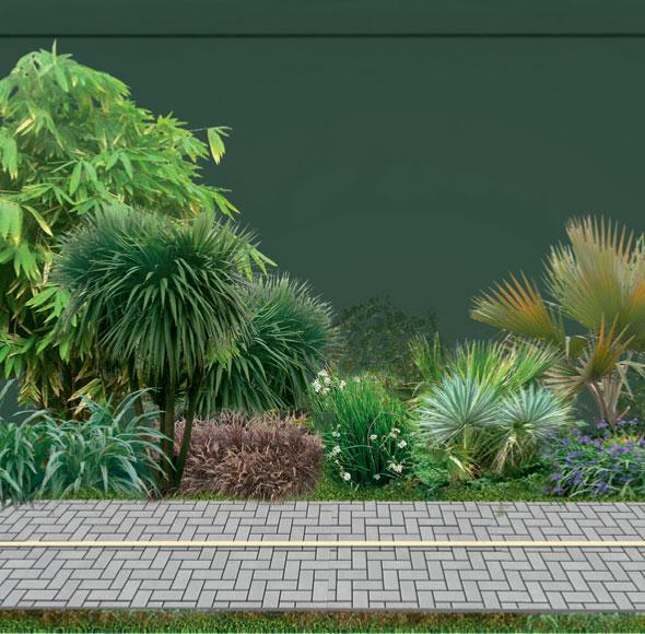 """MASSA UNIFORME. Também com 2 m de largura, a faixa de acesso ao Jockey Club, junto ao muro de pastilhas original, é a mais arborizada, com espécies resistentes à inundação (Tropical Plantas), como capins de várias cores, a exemplo do fórmio, e bambus, caso do bambu-japonês. """"Pintamos o muro bege de verde-escuro. Com isso, ele desaparece ao capturar a paisagem de dentro do Jockey e fundi-la na vegetação do canteiro do lado de fora"""", ensina Benedito. A tonalidade resultou da mistura de uma medida de tinta preta com duas de verde-colonial (Foto: Zé Gabriel)."""